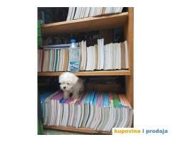 Rasprodaja udžbenika