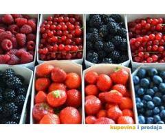 Branje voca u Slovackoj