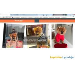 Prodaja web sajta pomeranci.com
