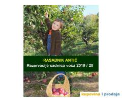 Rezervacije Sadnice voća - jesenja sadnja