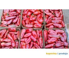 Paprika roga