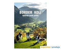 Border koli Ajnstajn medju psima Novo