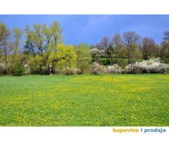 Plac 6 Ari Kraljevo naselje Grdica na prodaju povoljno