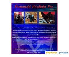 Peruanski Bezdlaki Pas