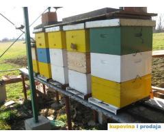 Radnici u pčelarstvu - kupujemprodajem | kupujem, prodajem